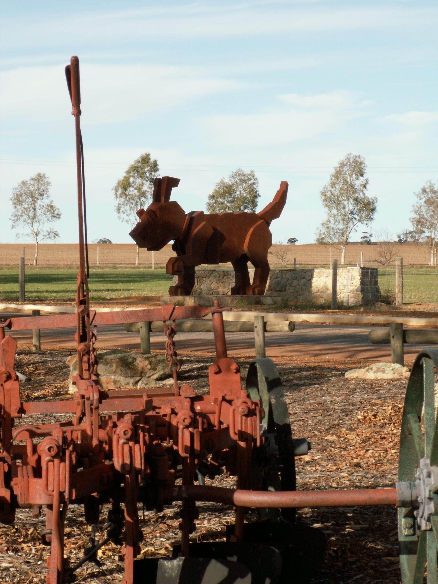 Rusty Tin Dog Dowerin