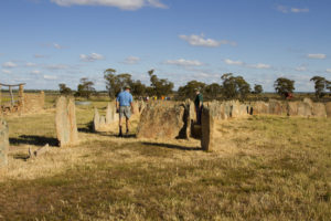 Pergandes Sheep Yards